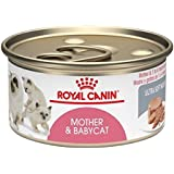 Royal Canin Feline Health Nutrition Babycat Instinctive Loaf In Sauce Canned Cat Food (Pack of 24)