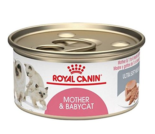 Royal Canin Mother & Babycat Ultra Soft Mousse Canned Cat Food (Pack of 24 3-Ounce Cans)
