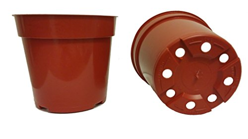 20 Standard Plastic Pots for Plants, Cuttings & Seedlings, 4-Inch, Terracotta (Terra Cotta Plastic)