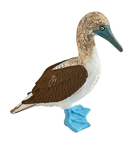 Safari Ltd. Blue Footed Booby - Realistic Hand Painted Toy Figurine Model - Quality Construction from Phthalate, Lead and BPA Free Materials - for Ages 3 and Up