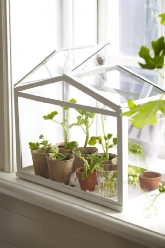 41utYMK9uWL - Ikea Greenhouse, Indoor/outdoor, White