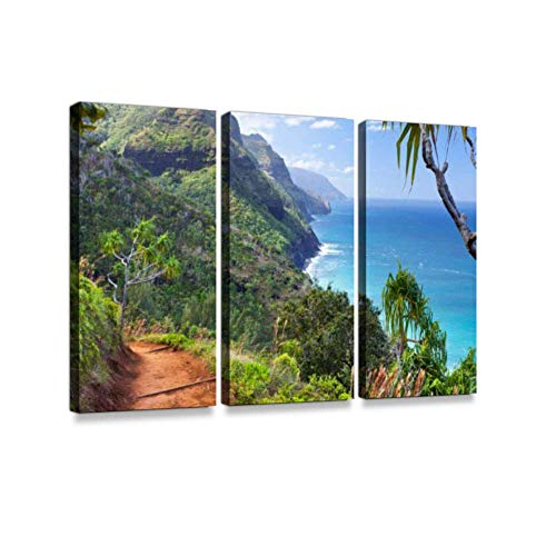(LanimioLOX Kalalau Trail, KauaiPrint On Canvas Wall Artwork Modern Photography Home Decor Unique Pattern Stretched and Framed 3 Piece)