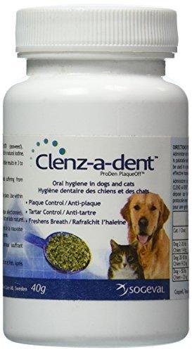 Clenz A Dent Food Additive (40 gm) by Clenz A Dent