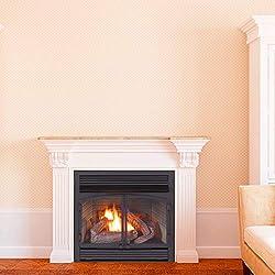 ProCom Heating Dual Fuel Ventless Fireplace Insert - 32,000 BTU, Remote Control, FBNSD400RT-ZC by Procom