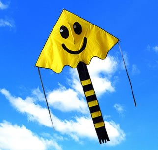 Large Easy Flyer Big Smiley face kite 4 x 7 ft by Weifang New Sky Kites by Weifang New Sky Kites