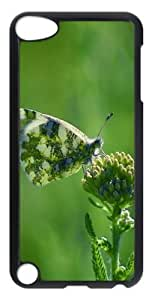 Armenia Butterfly PC Hard Case Cover for iPod Touch 5 - Transparent