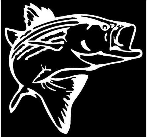 (White Vinyl Decal - Striper Fish Fishing Salt Water Lake Bass Fun Sticker, Die Cut Decal Bumper Sticker for Windows, Cars, Trucks, Laptops, Etc.)