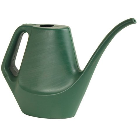 Southern Patio Dynamic Design Watering Can