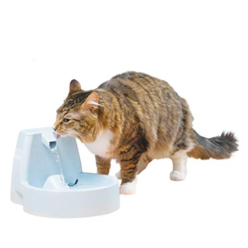 PetSafe Drinkwell Butterfly or Original Pet Fountains - 50 oz Capacity Fresh Filtered Water Dispensers for Cats and Dogs - Adjustable Flow - Filters Included