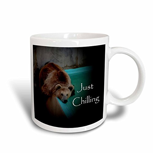 3dRose Grizzly Bear by Pool Mug, - Grizzly Pic Bear