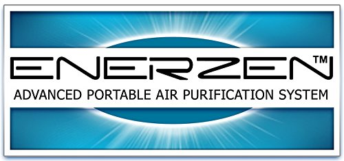 Buy air deodorizer