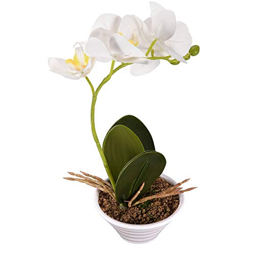 ENCOFT phalaenopsis Silk Artificial Flower White/Puple/Pink/Yellow Butterfly Orchid Bonsai with Ceramic vase Home Garden Party Wedding Decoration (White) (Imitation Orchids)
