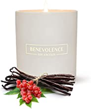 Premium Scented Candle Soy Candle | Luxurious Redcurrant & Vanilla Aromatherapy | Ceramic Jar Vegan All Na