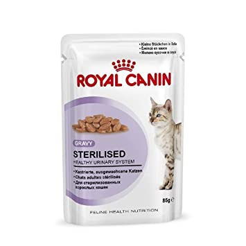 Royal CANIN | Feline Health Nutrition sterilised en salsa | 12 x 85 g: Amazon.es: Productos para mascotas