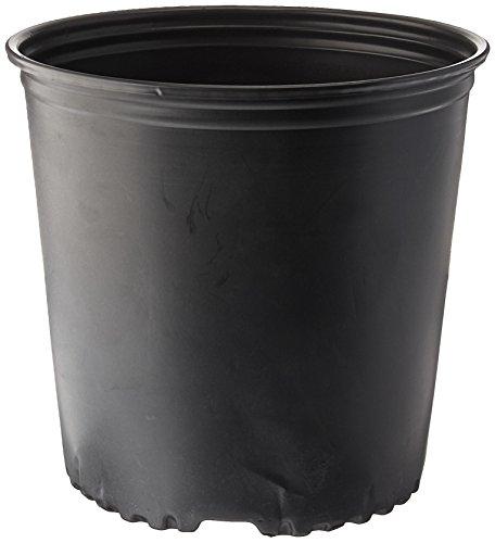 plant pot 2 gallon - 3