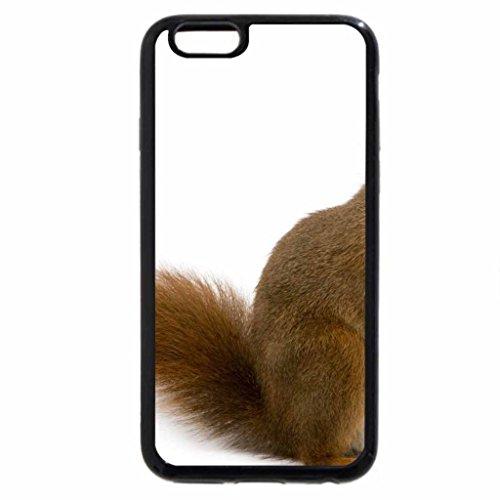 iPhone 6S / iPhone 6 Case (Black) Squirrel