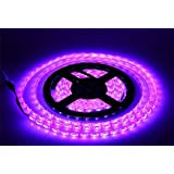 Lumcrissy led light strip -12V LED Strip Lights Waterproof 3528 SMD 5M 300LED 300 Units LEDs Light Strip (Purple)