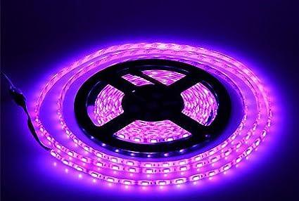 Amazon lumcrissy led light strip 12v led strip lights lumcrissy led light strip 12v led strip lights waterproof 3528 smd 5m 300led 300 units aloadofball Images