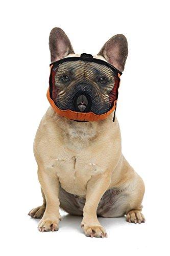 Brachycephalic Maul Cesta para Perros con aplanada Nariz: Bulldog Inglés, Bulldog Francés, Pekingese, Shih - Tzu, Perro, También Adecuado para Gatos.