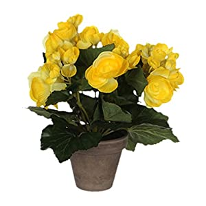 Mica Decorations 977007Begonia Flower, Yellow 58