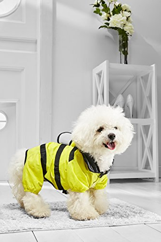Small Dog Bumble Bee Raincoat With Hood For Bichon Frise Mini Poodle Jack Russell (Medium Size, yellow, black)