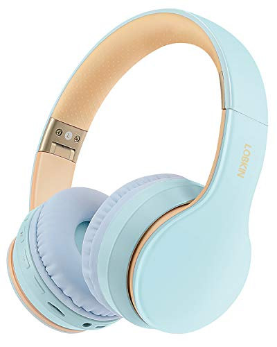 Wireless Bluetooth Headphones, Lobkin Over-Ear Stereo Foldable Headphones,Hi-Fi Stereo Headset With Microphone, Supports Hands-Free Calling and Wired Mode for Cell Phone TV PC Laptop (Sky Blue)