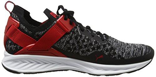 Ignite black toreador Homme Running Noir white Compétition Puma Evoknit Lo Chaussures De BPFd7qz