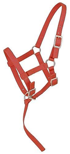 UPC 688499110013, Tough 1 Tough-1 Nylon Foal Halter, Red, Suckling