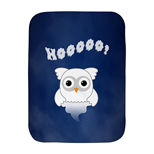 Truly Teague Baby Blanket White Spooky Little Ghost Owl In The Mist by Truly Teague