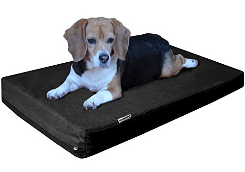Rectangular Pet Bed Cushion - Dogbed4less Orthopedic Memory Foam Dog Bed with Heavy Duty Black Canvas Cover, Waterproof Liner and Extra Pet Bed Case, Small Medium Gel Cooling 35X20X4 Pad