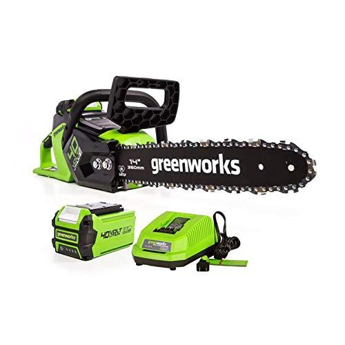 [해외]Greenworks 14-Inch 40V Cordless 체인톱 / Greenworks 14-Inch 40V Cordless Chainsaw, 2.5 Ah, CS40L2511