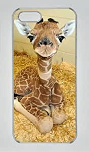 Baby Giraffe 001 Iphone 5 5S Hard Shell with Transparent Edges Cover Case by Lilyshouse