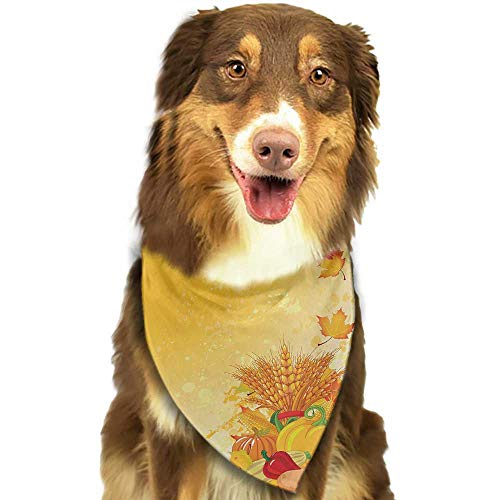- Dog Bandana Harvest Vivid Festive Collection of Vegetables Plump Pumpkins Wheat Fall Leaves W27.5 xL12 Scarf for Small and Medium Dogs and Cats