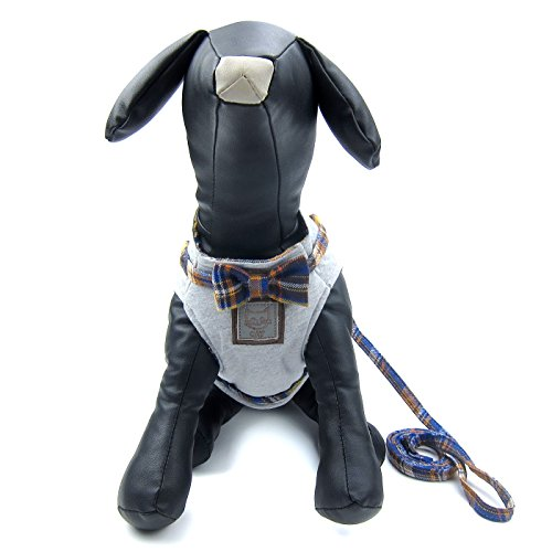 Alfie Pet by Petoga Couture - Burma Vest Harness and Leash Set - Color: Grey Yellow, Size: XS by Alfie