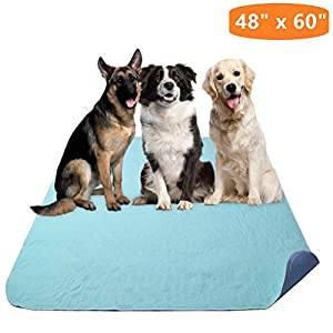 KOOLTAIL Washable Pee Pads for Dogs – Waterproof Dog Mat Non-Slip 48″ x 60″ Reusable Puppy Training Pad, Whelping Mat