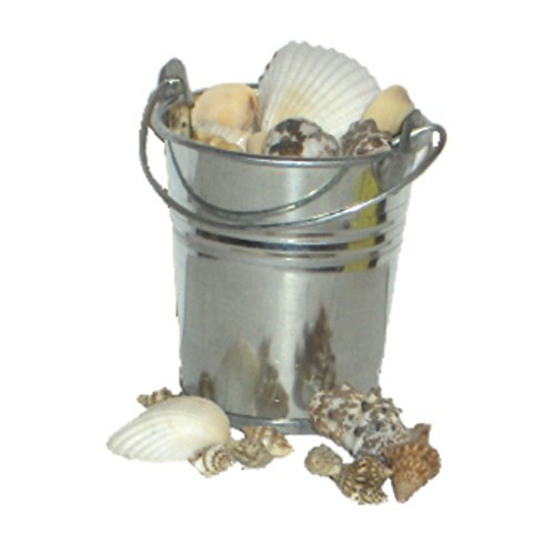 Pail of Seashells - Made to Fit American Girl Caroline Accessories - 18 Inch Doll Beach - Of Seashells Made What Are
