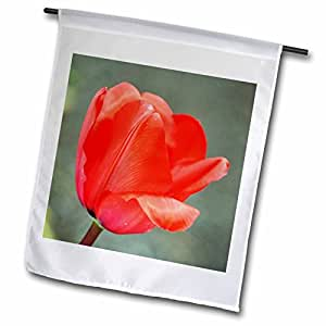 PS Flowers - Red Tulip - Spring - Flower Photography - 12 x 18 inch Garden Flag (fl_52811_1)