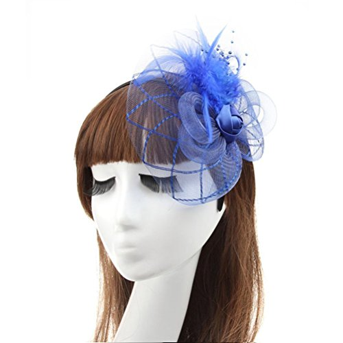 Fascinator Hair Clip Head Hoop Feather Rose Flower Derby Cocktail Party Wedding Women Blue (Halloween Prop Making Books)