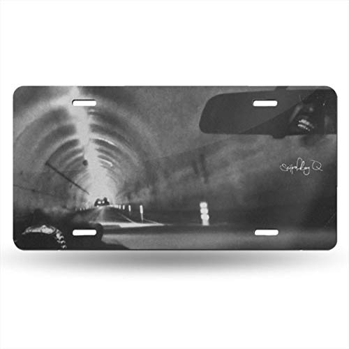 AmyMcLeod Schoolboy Q License Plate Car Front License Plate,Metal Car Plate,Aluminum Novelty License Plate,6 X 12 Inch (4 Holes)