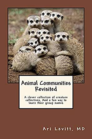 animal communities revisited a clever collection of critter