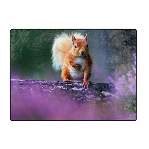 (QIUBDSX Floor Mats Squirrel Door Mats Hall Rugs Indoor Home Bedroom Kitchen Bathroom Carpet)