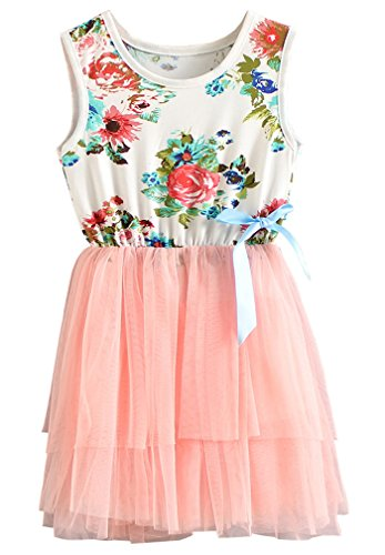 Niyage Little Girls Sleeveless Floral Princess Dress Tulle Tutu Sundress 3T Pink