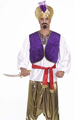Mens Sultan Costumes (Forum Novelties Men's Desert Prince Costume Shirt and Vest, Multi, One size)