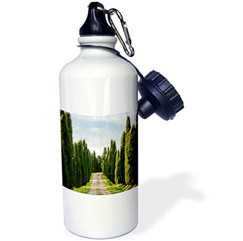 3dRose Danita Delimont - Roads - Italy, Tuscany, Long Driveway lined with Cypress trees - 21 oz Sports Water Bottle (wb_277692_1) by 3dRose