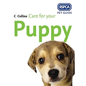 Care for Your Puppy (RSPCA Pet Guides)