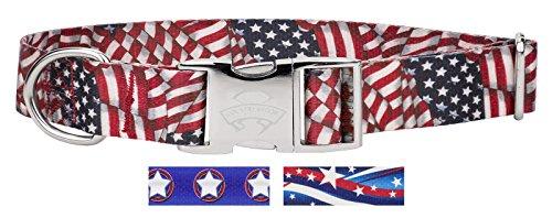 Country Brook Design Patriotic Tribute Premium Dog Collar - Large