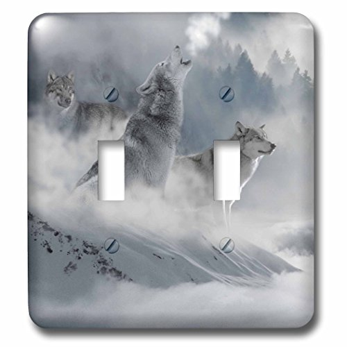 3dRose lsp_252104_2 2 Fantasy Wolf Wolves Animal with Clouds-Double Toggle Switch by 3dRose