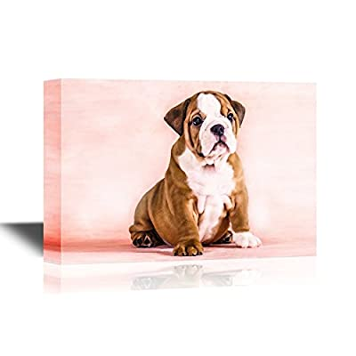 Dogs Breeds Canvas Wall Art - English Bulldog Puppy - Gallery Wrap Pet Art for Modern Home Art | Ready to Hang - 12x18 inches