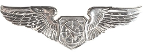 (Air Force Air Battle Manager Dress Brite Badges (Full Size, Basic))