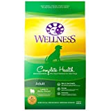 Wellness Complete Health Natural Dry Dog Food, Lam...